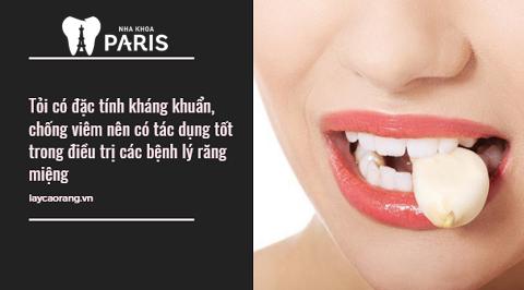 Ngậm tỏi giúp ức chế vi khuẩn, giảm sưng đau vùng viêm lợi viêm chân răng